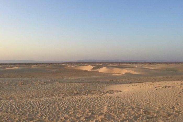Такая разная Сахара