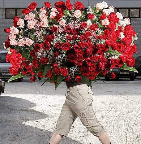 День Ж: наблюдения флориста