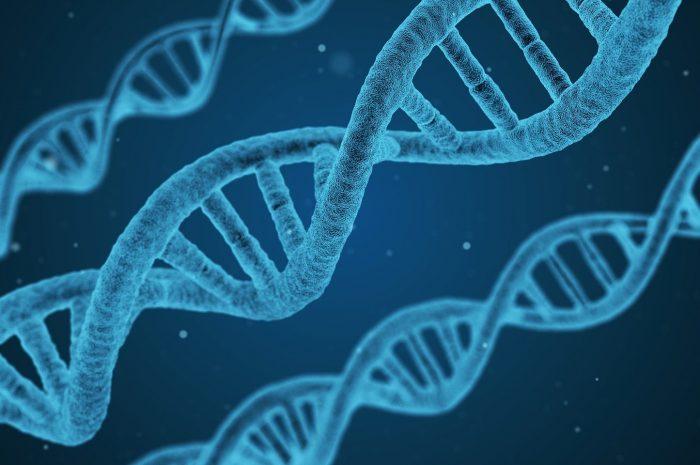 ДНК из воздуха: ученые впервые собрали образцы