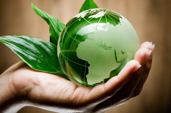 Экологичные привычки, которые не навредят планете